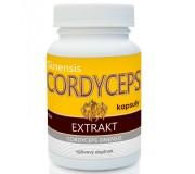 Cordyceps extrakt (60 kapslí)